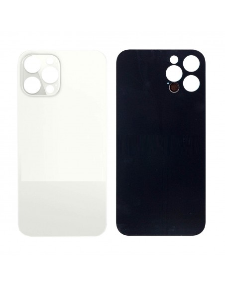iPhone 12 Pro Max Back Cover - Silver Apple - 1